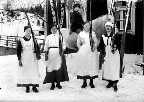 Rivoluzione finlandese